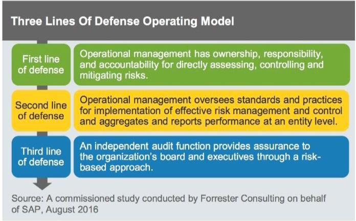 SAP Audit Management: Improve and Protect Business - Winterhawk